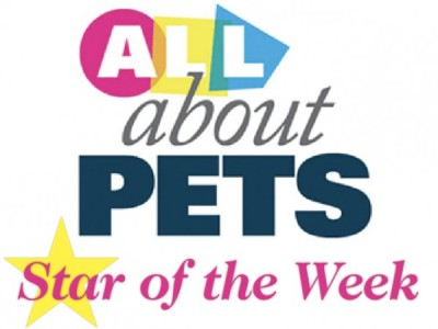 gmtoday com/pets | Conley Media | Newspaper | West Bend, WI