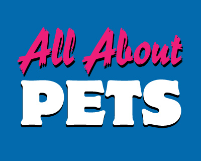 Jacksonville.com | All About Pets