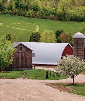 Pioneer Creek Farm