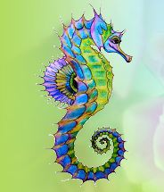 Seahorse Florist Boutique