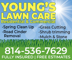 Young's Lawncare