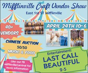 Mifflinville Craft Vendor Show