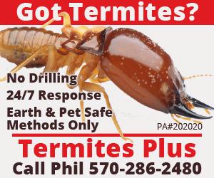 Termites Plus
