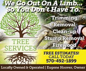 Tree Services LLC