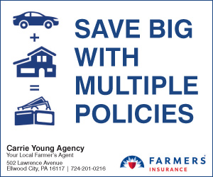 Carrie Young-Farmers Insurance