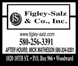 Figley-Salz Insurance