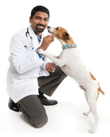Baymeadows Animal Hospital