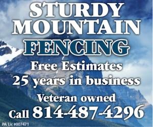 Sturdy Mountain Fence
