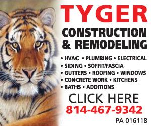 Tyger Construction