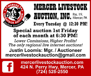 Loomis Auctions/Mercer Livestock Auctions