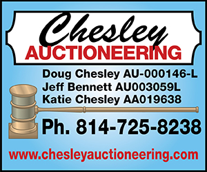 Chesley Auctioneering