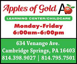Apples of Gold Child Care