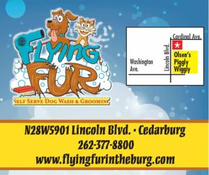 Flying Fur Self Serve Dog Wash and Grooming